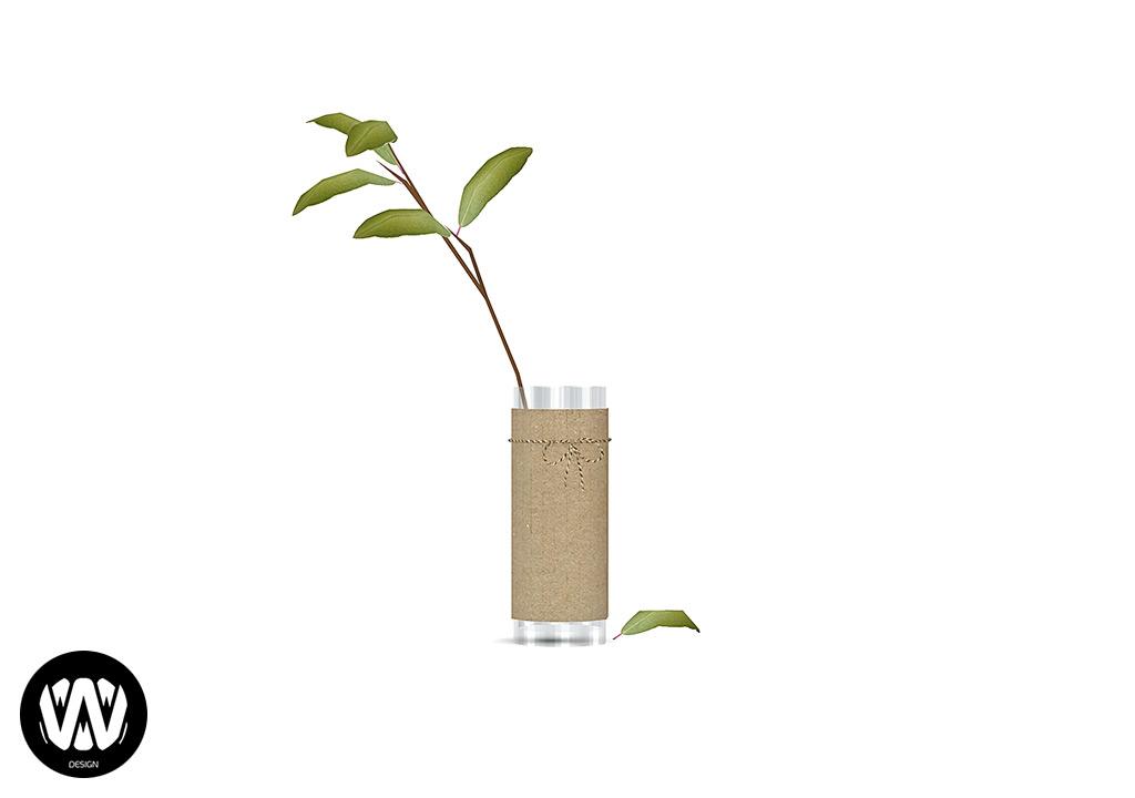 Lupinus Plant
