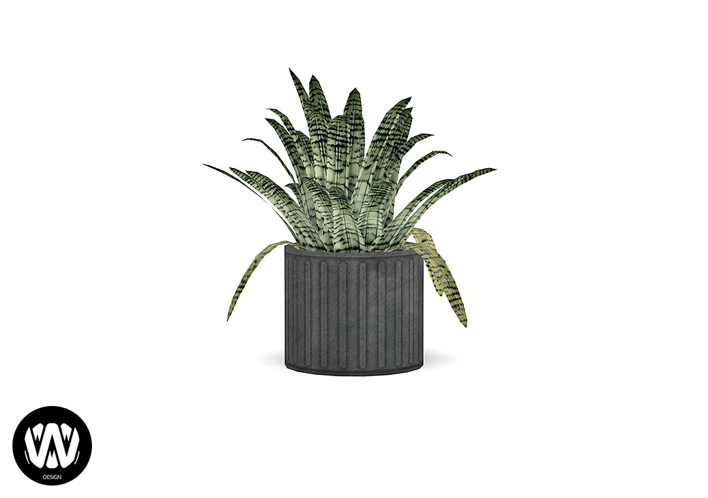Sequoia Plant