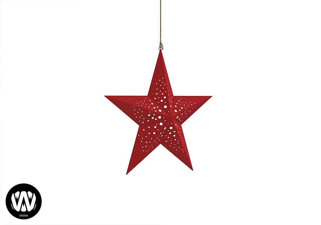 Salvia Hanging Star – Big